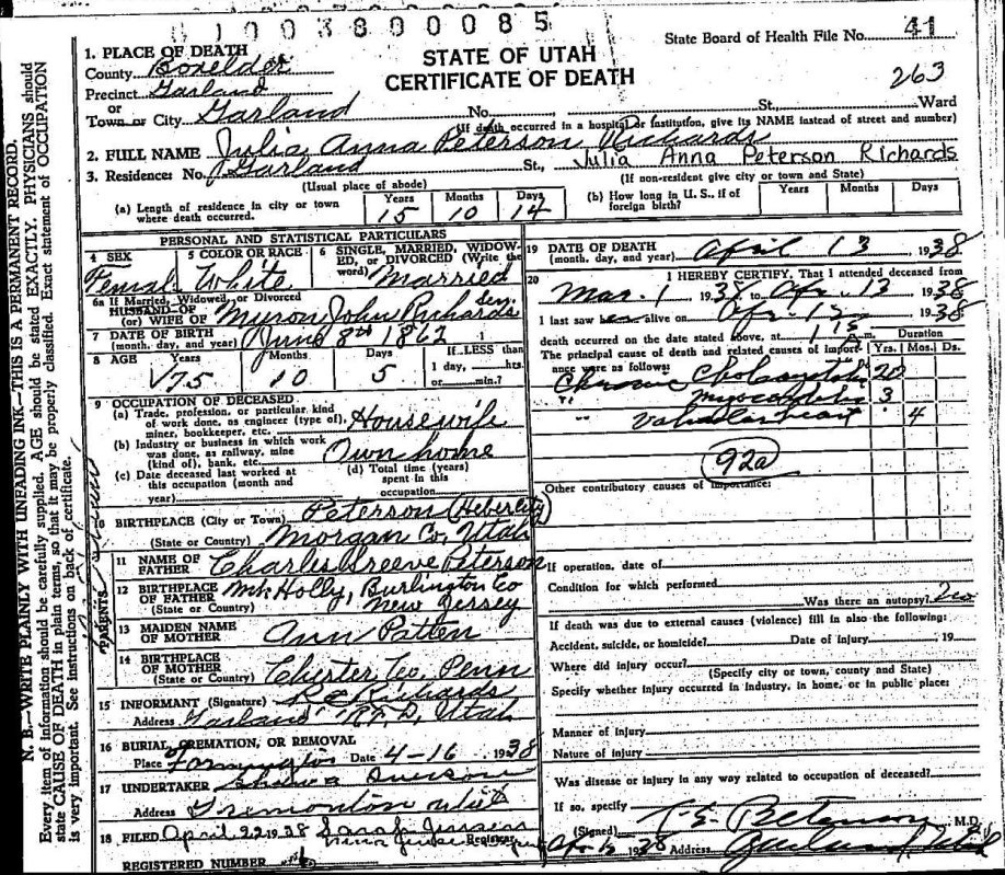 Documents Utah Death Certificate Julia Ann Peterson Young Hogan